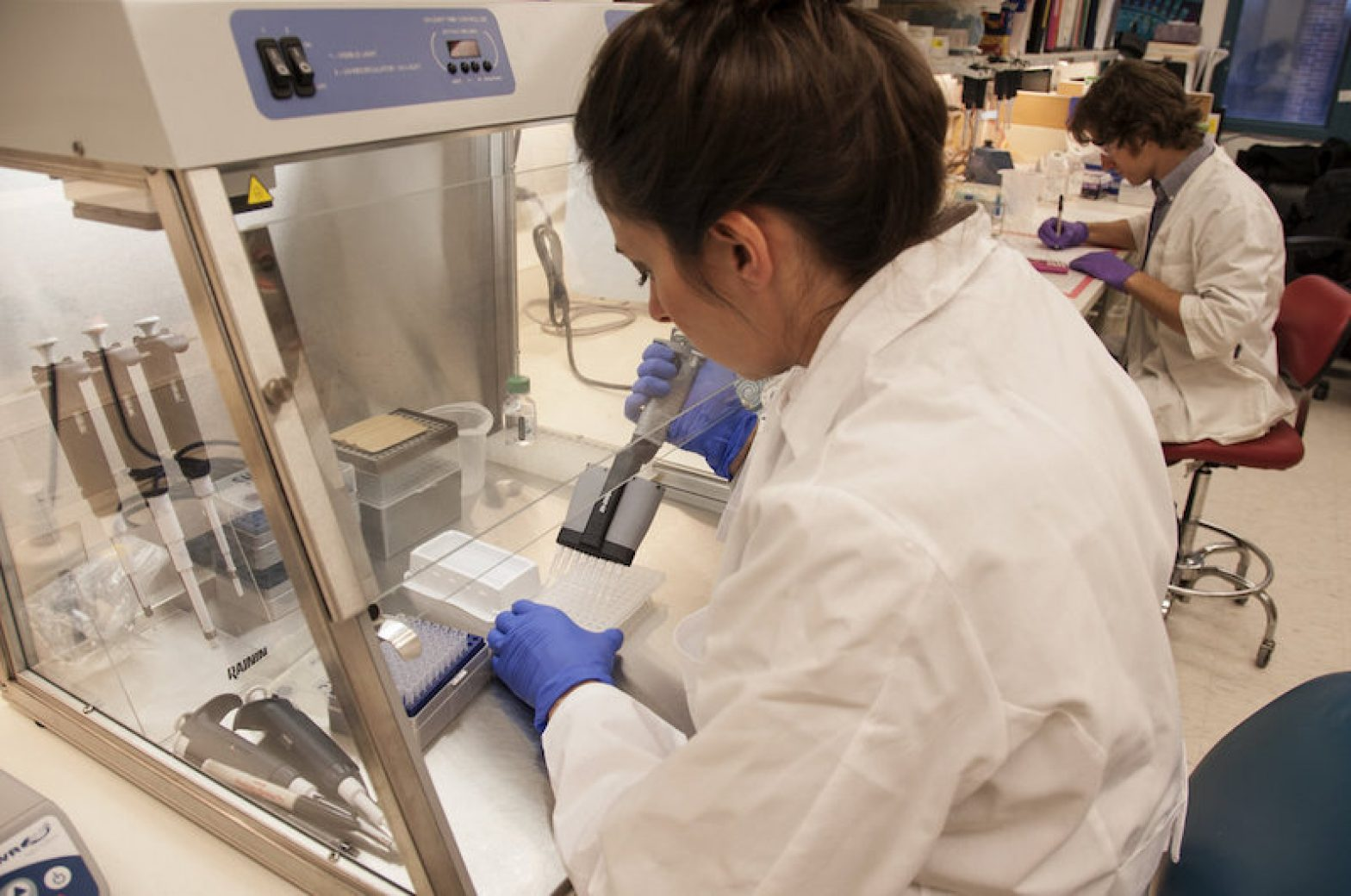 Jessica Lo Surdo, M.S. (foreground), a staff scientist at the Food and Drug Administration, studies chain reactions in stem cells in an FDA laboratory on the National Institutes of Health campus in Bethesda, Md.