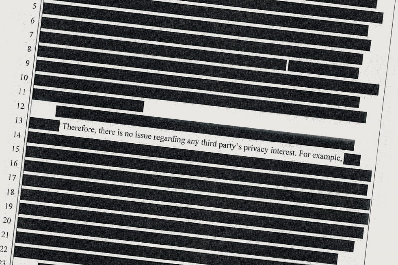 redacted image
