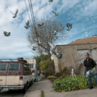 """Merced Domínguez observa a las palomas volar sobre su jardín en la calle Octava. """"Todos los días, me siguen a donde quiera que vaya,"""" dijo Domínguez, arrojando alpiste en la banqueta. """"Todo el camino hasta el Dollar Tree y de vuelta a casa. Solo están esperando que los alimente."""" La rutina habitual de Domínguez consiste en colocar comida y agua en la banqueta afuera de su vehículo para los animales callejeros que visitan la manzana, incluyendo un gato callejero que llamó Cookie y las docenas de palomas que aparecen dos veces al día."""
