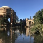 The Department of Public Health has identified the Palace of Fine Arts as a possible location for a pop-up ward wards to be used in the event of a coronavirus surge.