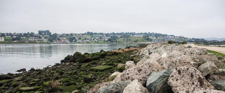 Heron's Head Park shoreline