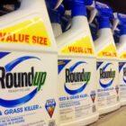 The science on the key ingredient in the top-selling U.S. weedkiller, Bayer's Roundup, is still in fierce dispute as the company settles thousands of lawsuits claiming health impacts for billions of dollars.