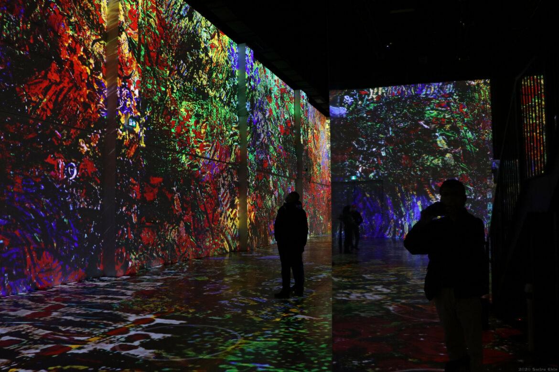 Van Gough virtual art exhibit