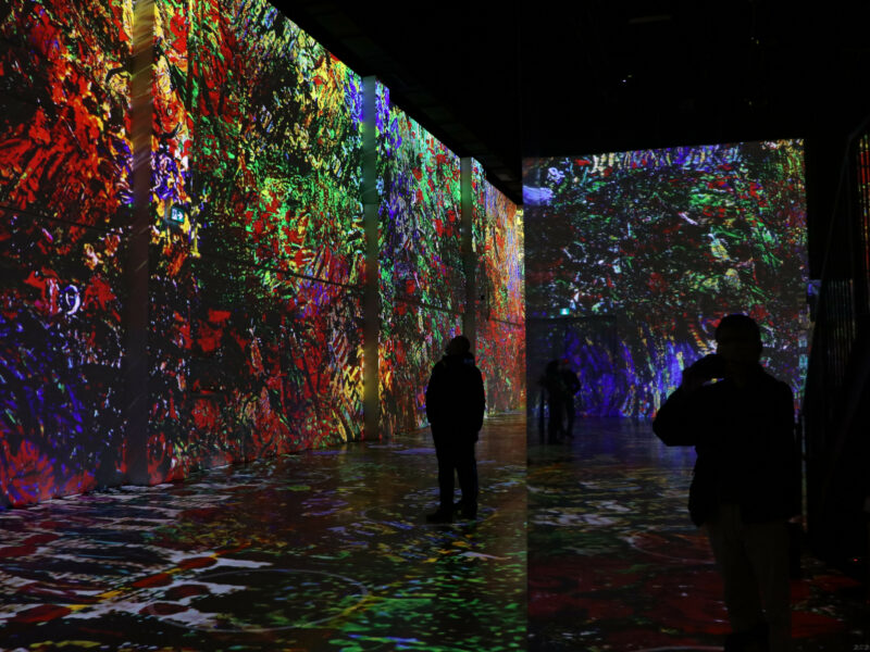 Van Gough virtual art exhibit